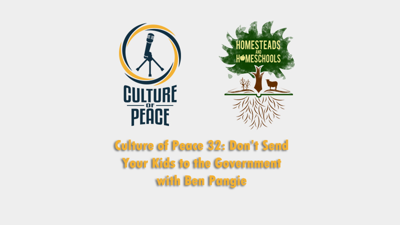 Culture of Peace 0032: Don't Send Your Kids to the Government